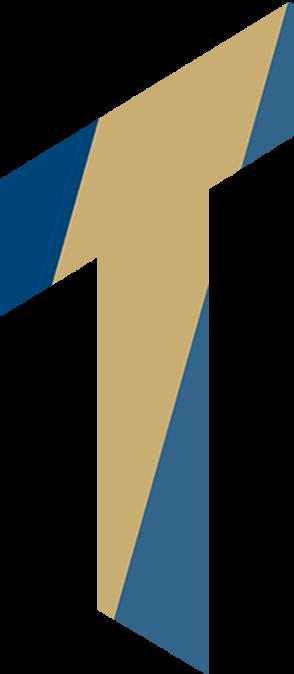 Logo Terluin Webdesign