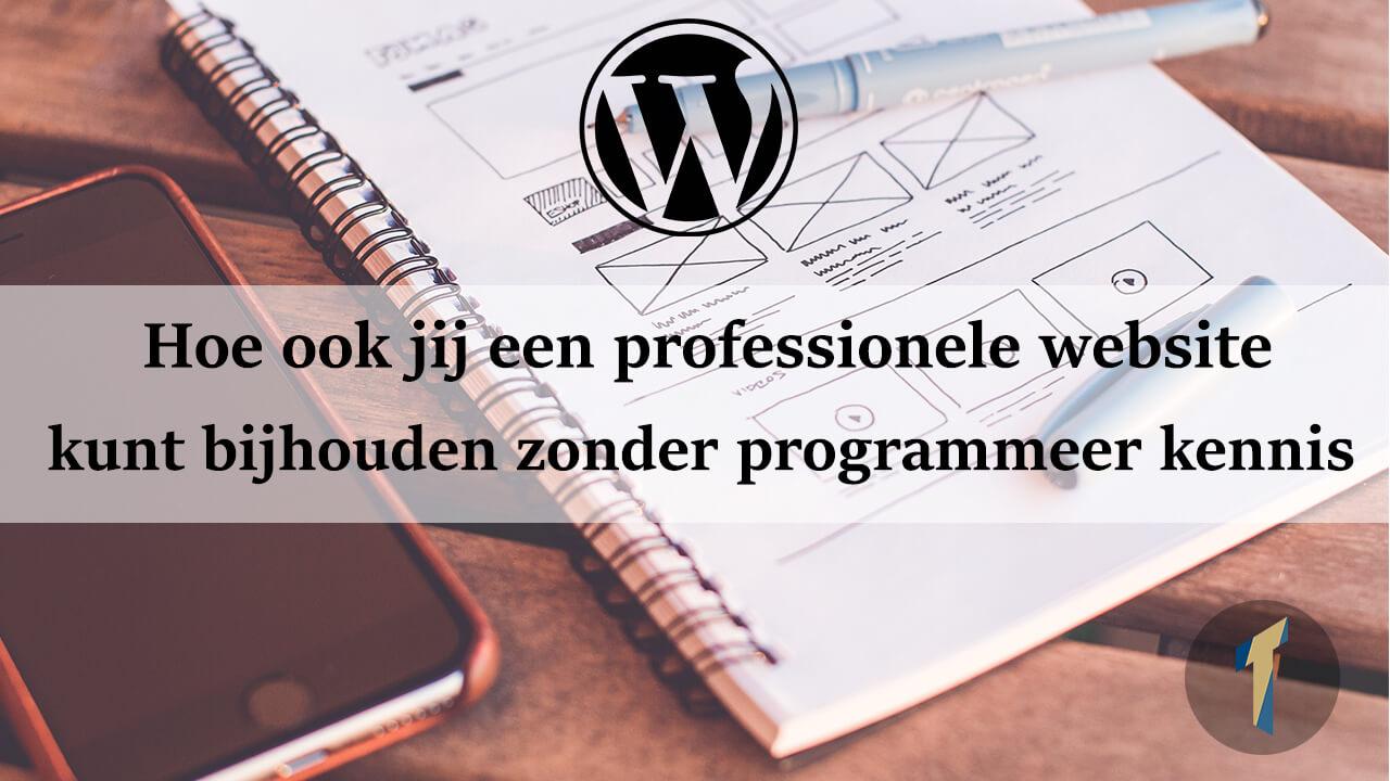 Professionele website zonder enige programmeerkennis